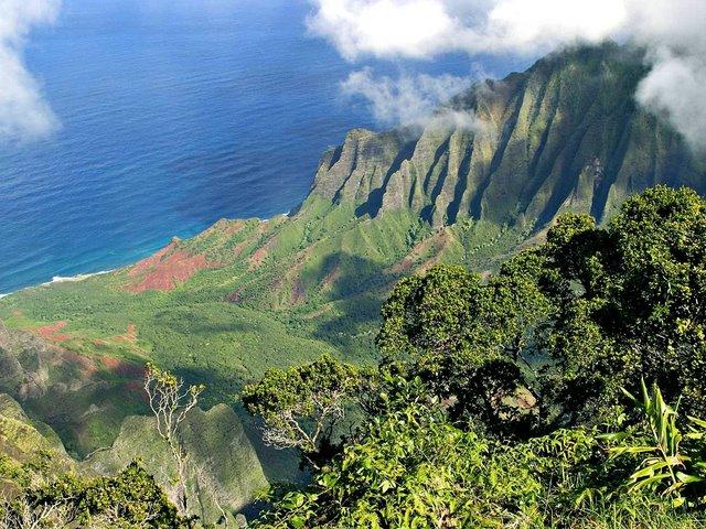 Напали на острове кауаи 10 08 2009 editor2 1210